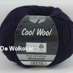 Merino Cool Wool 2013 donkerpaars-0