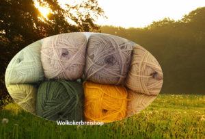 Cal 2016 lossen en vasten pakket Ochtenddauw Colour Crafter -0