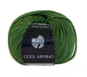 Cool Merino 004 Groen