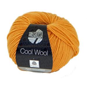 Cool Wool 2083 Dahliageel