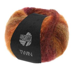 Twin 110